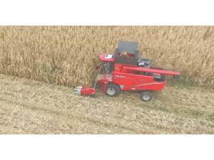 牧神4YZT-10自走式玉米籽粒收获机-作业视频