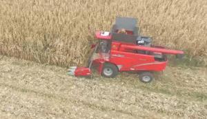 牧神4YZT-10自走式玉米籽粒收獲機-作業視頻