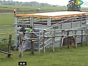 庄稼汉Betimax系列动物专用拖车