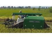 常发CF805N水稻收割演示会