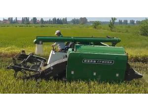常發CF805N水稻收割演示會