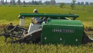 常发CF805N水稻收割演示会-产品讲解