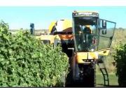 Pellenc公司890型自走式葡萄收获机