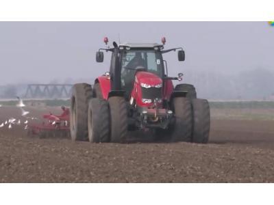 麦赛福格森拖拉机配播种机种植甜菜