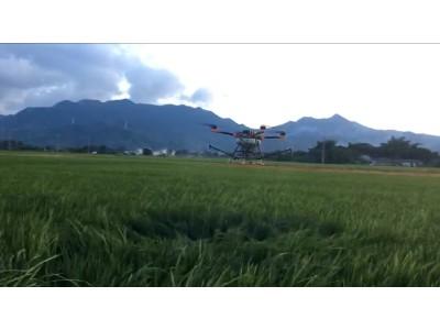 多旋翼植保無人機TY-D10水稻作業