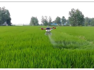 多旋翼植保機TY-D10水稻稻飛虱防治