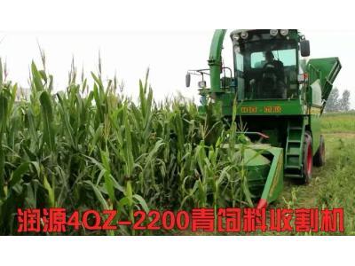山東潤源4QZ-2200青貯收獲機視頻