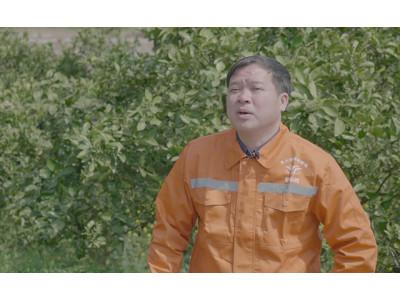 年掙20萬,他用親身經歷告訴你無人機打橙子樹行不行