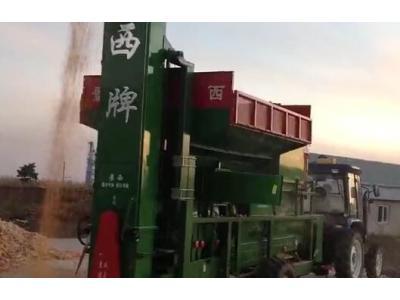 景西牌玉米脫粒機2014年新玉米脫粒視頻