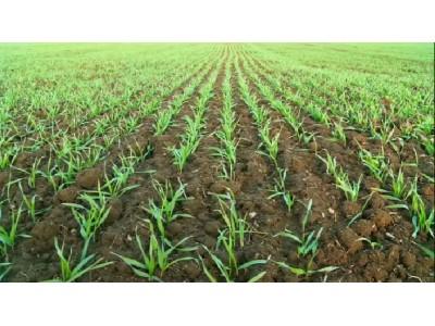 爱科农业解决方案