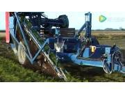 阿萨利T155Box胡萝卜收获机作业视频