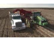 Spudnik公司大型土豆联合收获设备作业视频