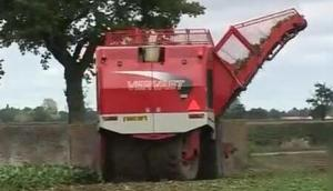 Vervaet公司BeetEater625自走式甜菜收獲機作業視頻