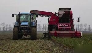 Riecam公司RBM230甜菜收获机作业视频
