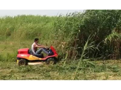 嘉顺创天园林除草小霸王作业视频