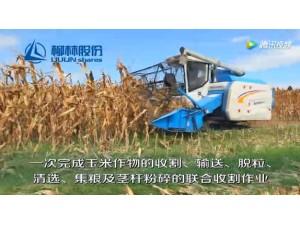 柳林玉米收割机演示现场视频