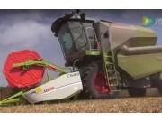 科乐收(CLAAS)AVERO240联合收割机视频