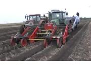 Tolmac公司MT14前置马铃薯收获机作业视频
