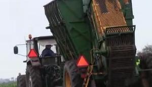 Valmet 705拖拉机牵引Thyregod公司甜菜收获机视频