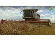 科乐收(CLAAS)LEXION系列联合收割机英国客户评价(三)视频