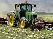 JURAN公司西瓜收获机作业视频