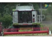 科樂收(CLAAS)LEXION620收割機作業實拍視頻
