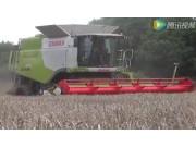 科乐收(CLAAS)LEXION670收割机作业实拍视频