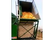 金大丰玉米机卸粮视频