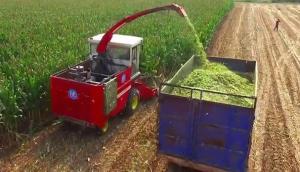 牧泽4QZ-14A型自走式青饲料收获机作业视频