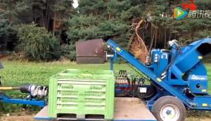 阿萨利公司GB系列青豆收获机视频