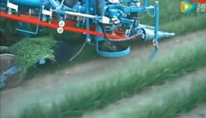 阿萨利公司SP200 PU韭菜收获机作业视频