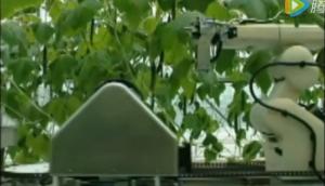Agrobot公司草莓收获机视频