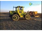 Franzino公司大蒜播种机视频