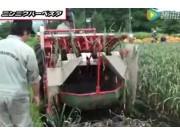 SASAKI公司4行大蒜收获机视频