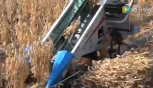 Hanseo公司BH710手扶式黃豆收獲機視頻
