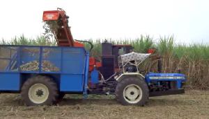 Shaktiman公司3737型甘蔗收獲機視頻