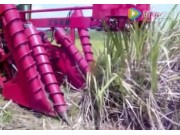 LCT公司HSZ2600甘蔗收获机视频