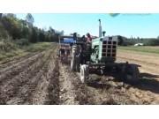 Wood Prairie农场土豆收获视频