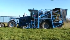 Vogel Engineering公司自走式4行胡萝卜收获机视频