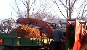 ALINA公司SUPERNOVA背負式胡蘿卜收獲機視頻