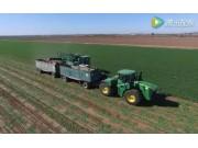 2016年Grimmway农场胡萝卜收获航拍视频