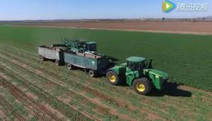 2016年Grimmway農場胡蘿卜收獲航拍視頻