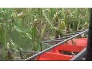 英虎4YZB-3B型自走式玉米收获机