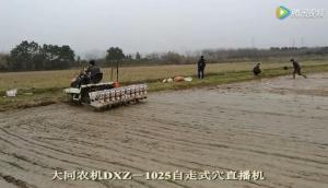 大同水稻精量穴直播机视频