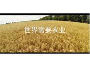 山東大華機械有限公司企業宣傳片