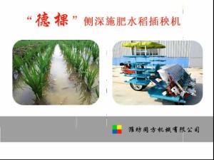 德棵侧深施肥水稻插秧机性能介绍