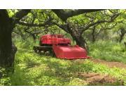 洛阳玛斯特1GZ-120遥控履带自走式旋耕机作业视频