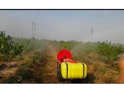 潍坊凯沃遥控履带式风送打药机作业视频
