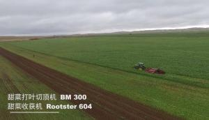 格立莫GRIMME甜菜两段式收获BM300+ROOTSTER60作业视频