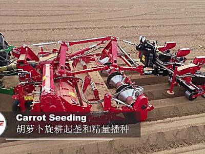 格立莫GRIMME胡萝卜旋耕起垄和精量播种作业视频